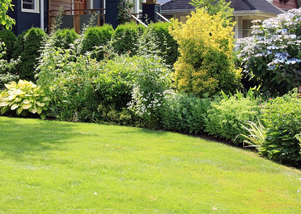 Morgan Cheramy – Paysagiste – Les jardins de Touraine